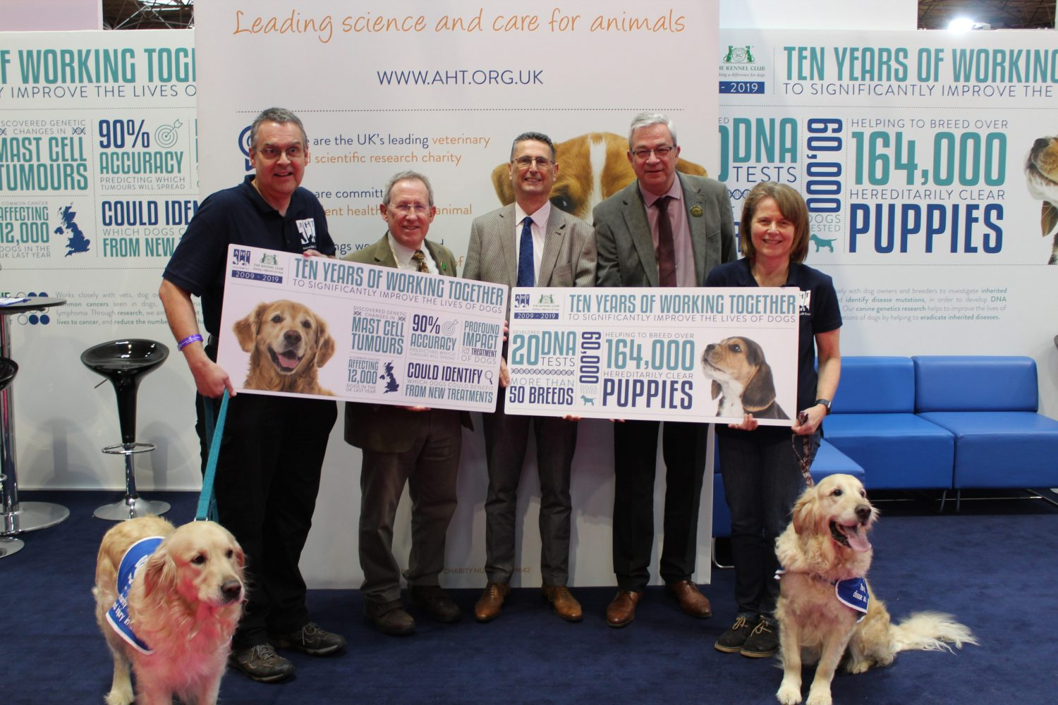 Celebrating 10 years improving dogs' lives