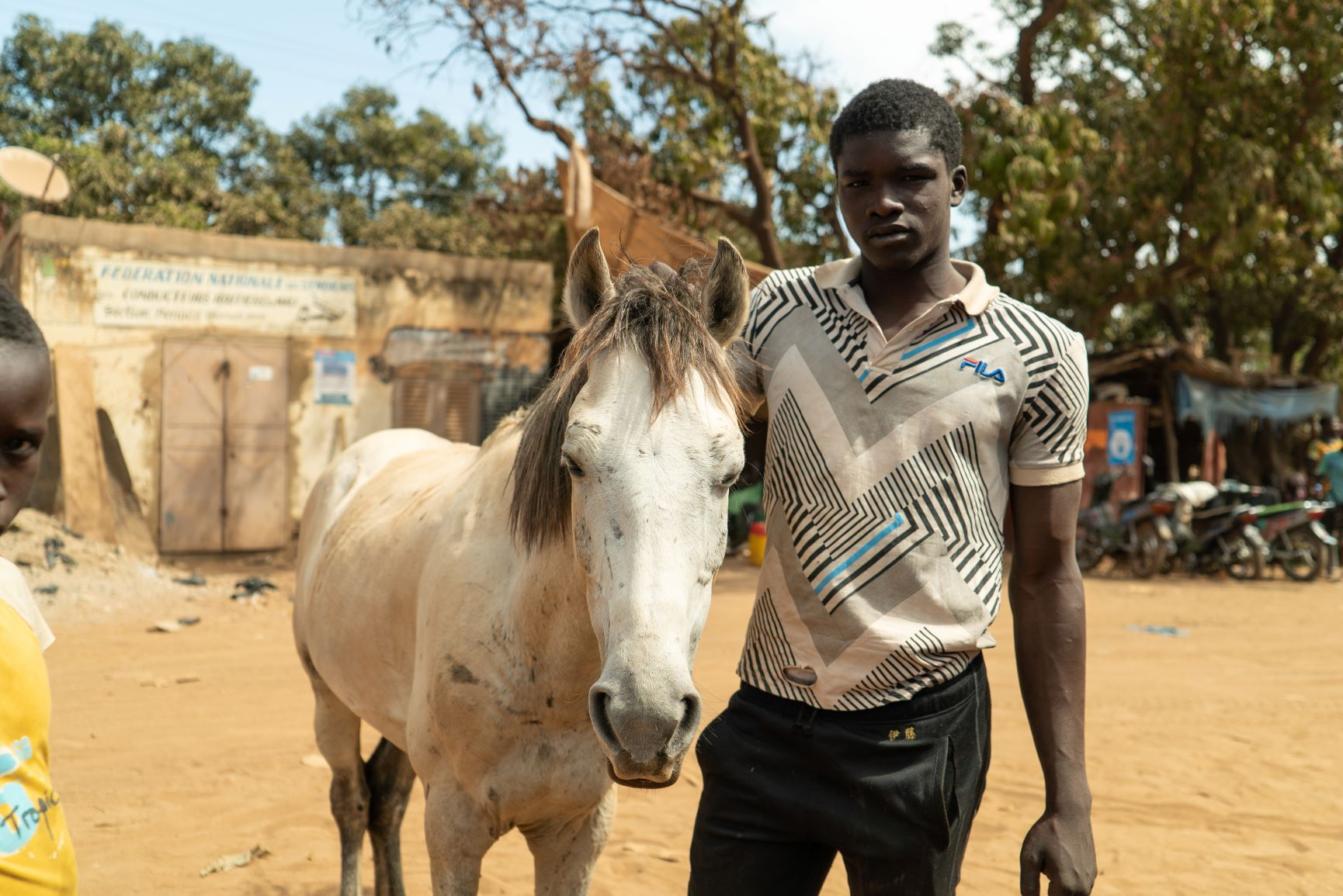 Improving the life of working horses in Mali