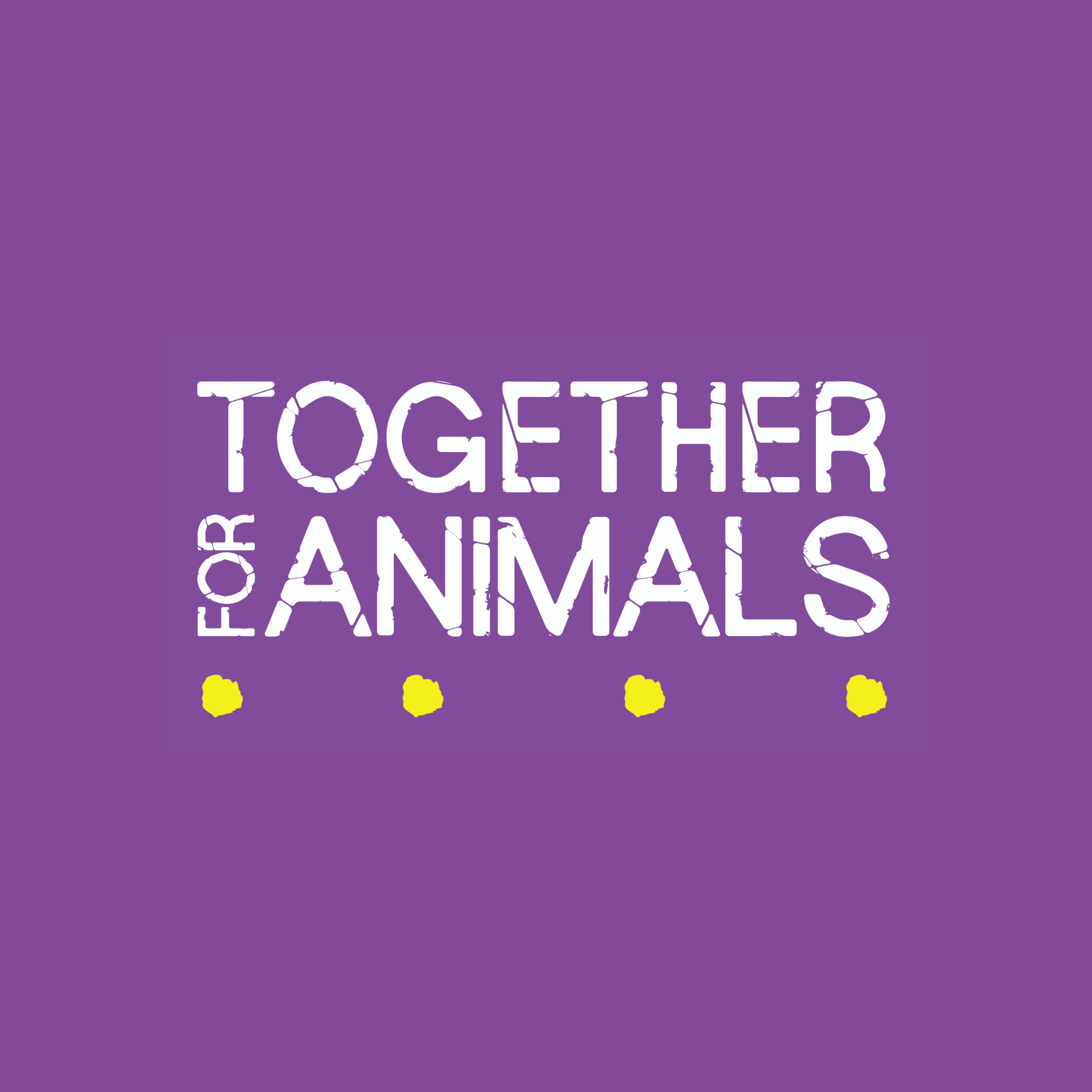 Update from Together for Animals