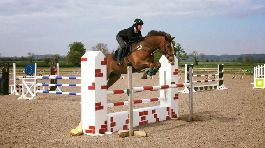 Rescue horse Harry's winning ways